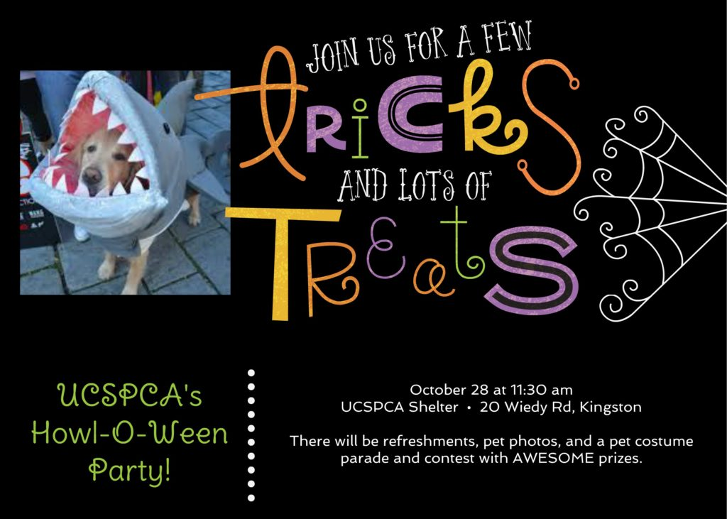 Howl-o-Ween Party @ Ulster County SPCA | Kingston | New York | United States