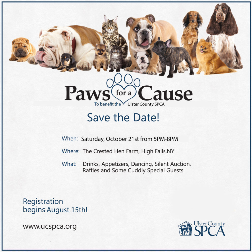 Paws for a Cause @ The Crested Hen Farm | High Falls | New York | United States